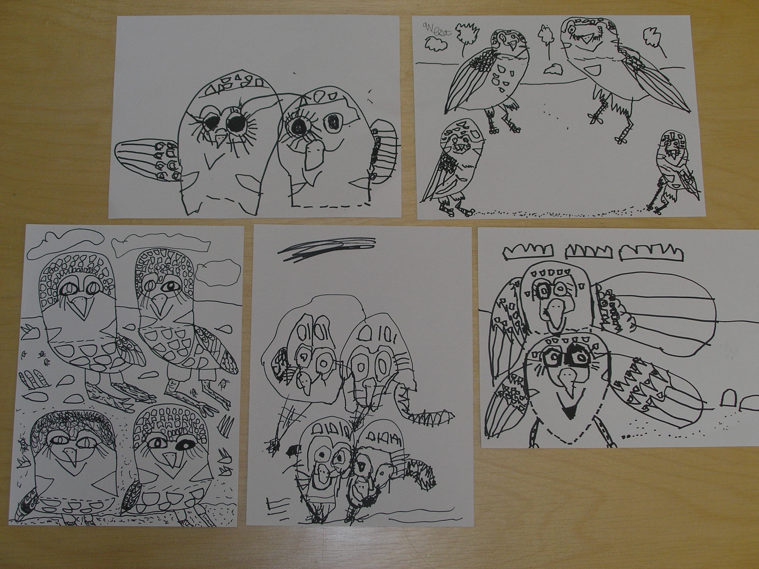 monart drawing program the art park these burrowing owl drawings were drawn by students ages 4 7 notice the attention to detail individuality of the compositions placement